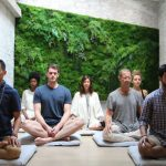 Why has meditation recently become popular?